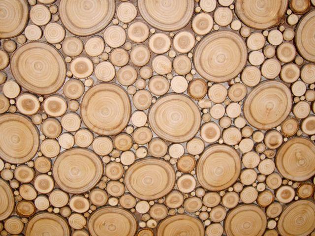 Comment Faire Un Mur En Bois Decoratif : de rondelles de bois s?ch? (1 ans de s?chage) pour la d?coration