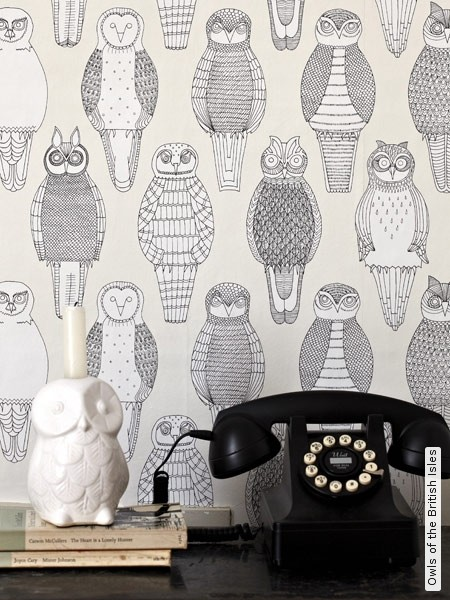 Papier peint chouettes -Owls of the British Isles- TapetenAgentur