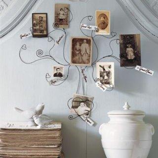 arbre généalogique fil-de-fer magazine Avantages